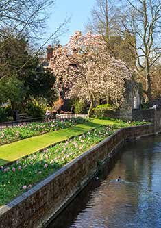A beautiful river in Canterbury, left view