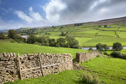 A view across the Yorkshire Dales in Swaledale